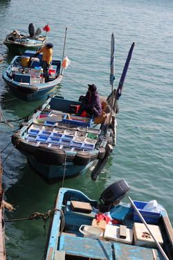 Boat Shops