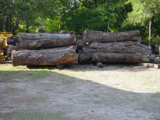 Mesquite, logs2055.jpg
