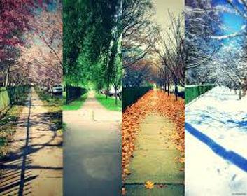 4 saisons.jpg