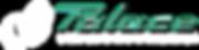 Palace logo skope-01.png