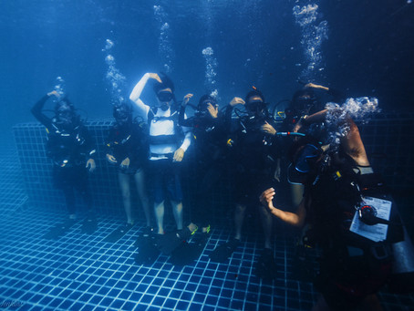 Five reasons to start diving
