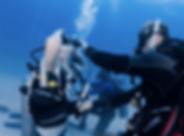 Open Water Diver kohtao