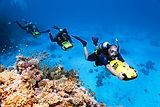 SSI-Diving17-e1480354407760.jpg