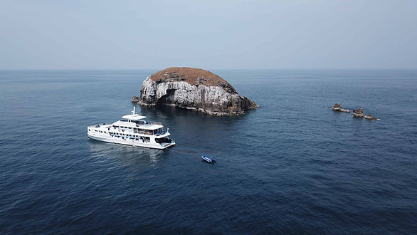 5 Great Reasons to Dive the Similan Isla