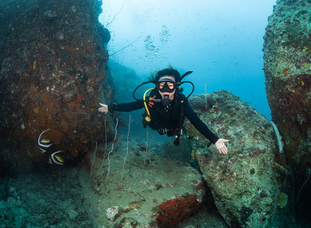 Koh Tao Diving Seasons - When is the Best Time to go Scuba Diving on Koh Tao?