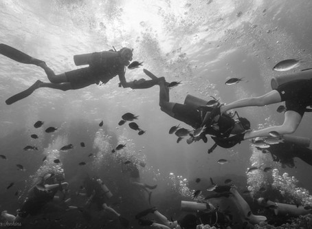 Fun Facts About Scuba Diving