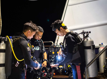 Five Reasons to Get Your PADI Advanced Open Water Diver Certification on Your Liveaboard Trip