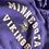 Thumbnail: Champion Minnesota Vikings,  L