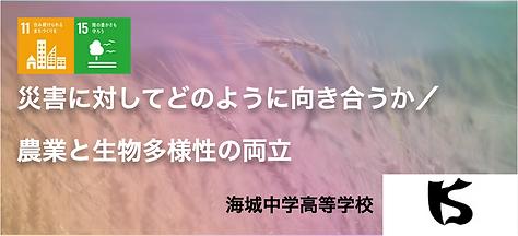 スクリーンショット 2020-11-04 12.57.56.png