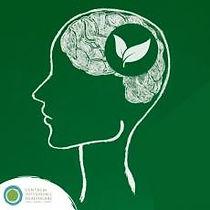 sustainable_mental_health CSH.jpg