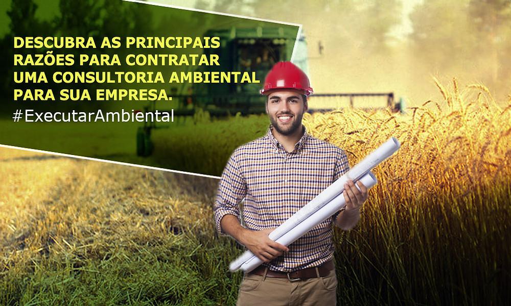 Descubra as principais razões para contratar uma consultoria ambiental para sua empresa.