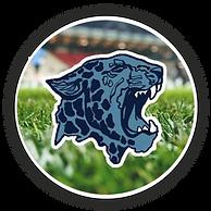 louisville leopard football.png