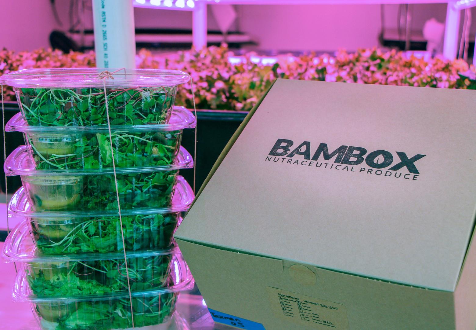 Bambox and Greens