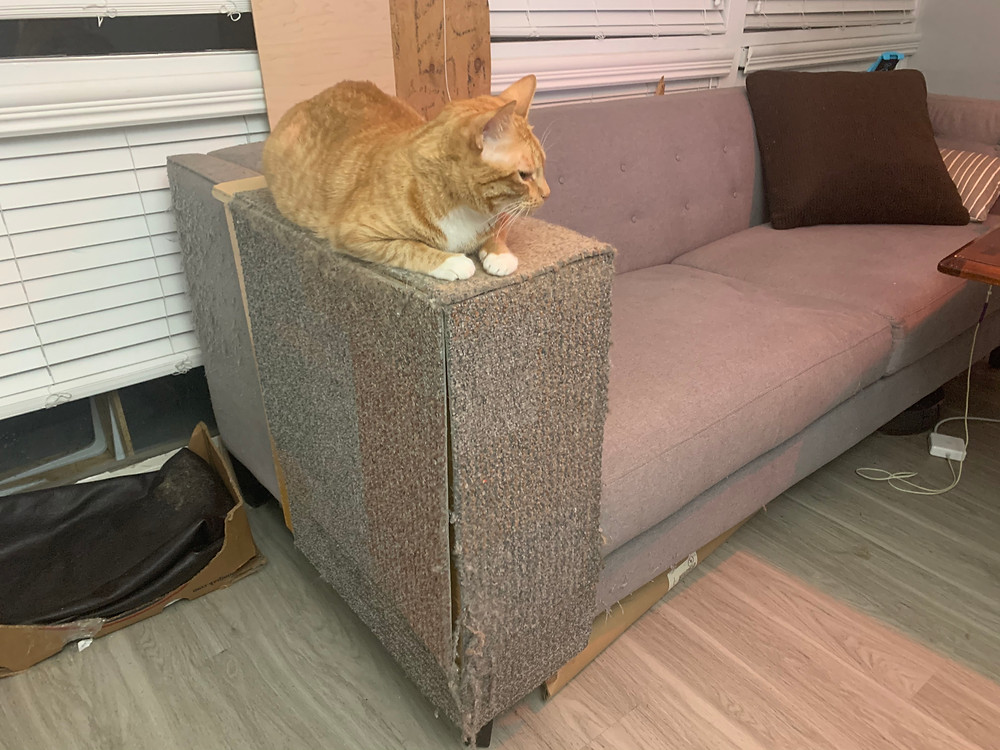 Couch arm cat scratcher protector