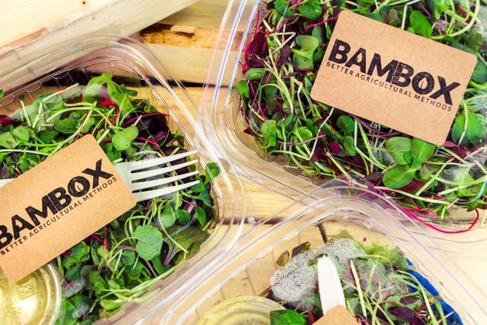 Bambox 3