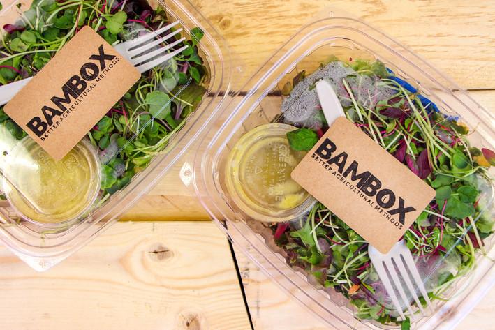 Bambox 2