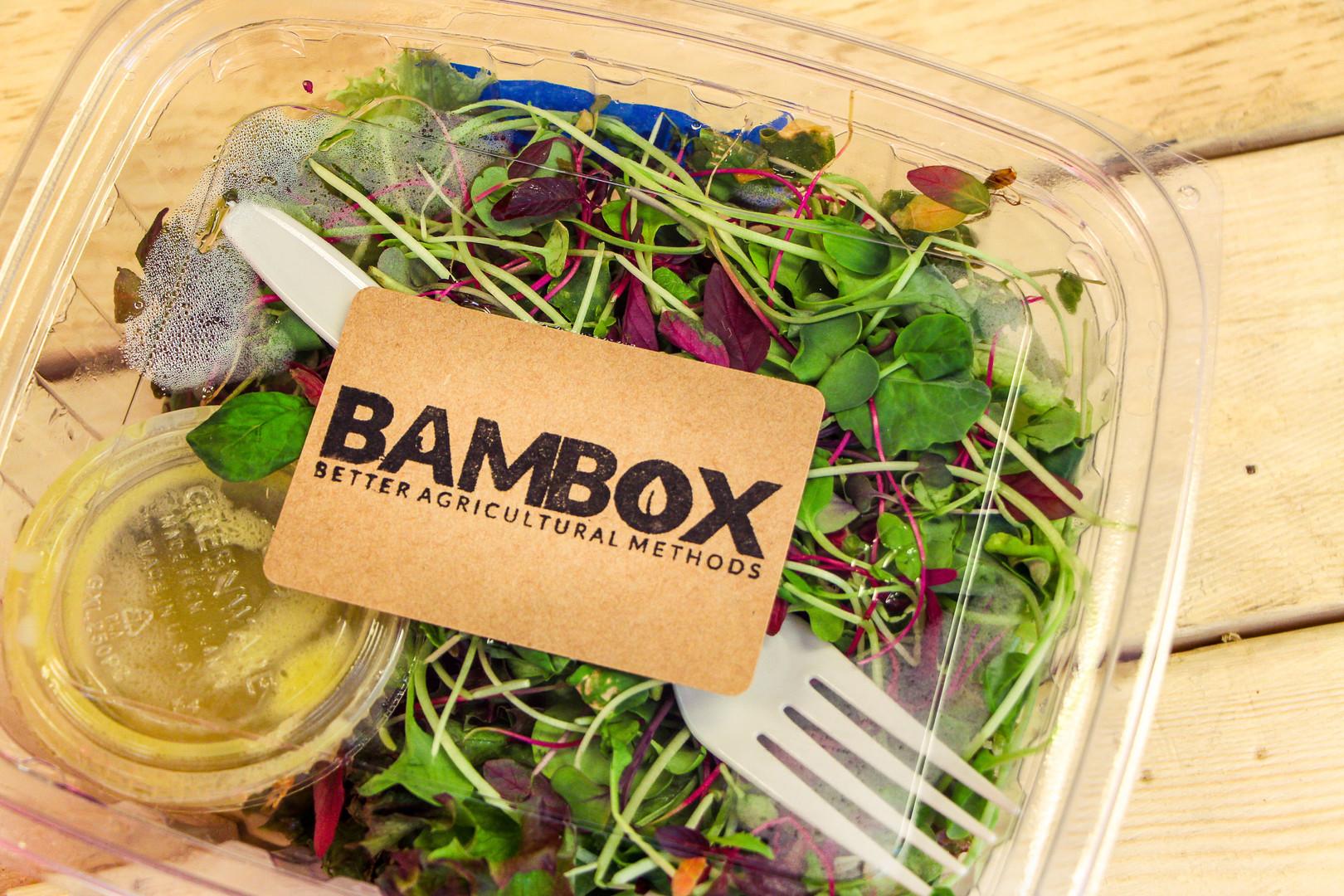 Bambox 1