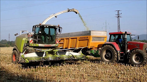 custom corn silage harvesting