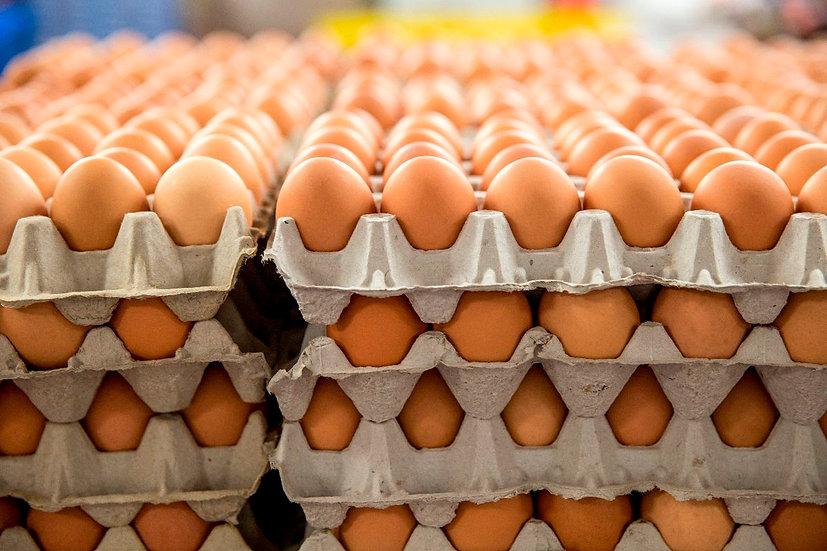 Egg Flat Deal (3 flats)