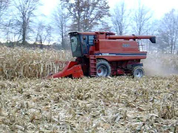 high moisture corn harvesting