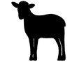 silhouette-of-a-sheep-vector-3069117_edi