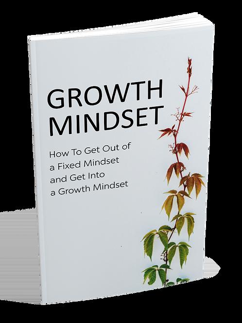 Growth Mindset E-Book