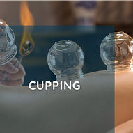 TCM Cupping Therapy Acupuncture Annex Toronto