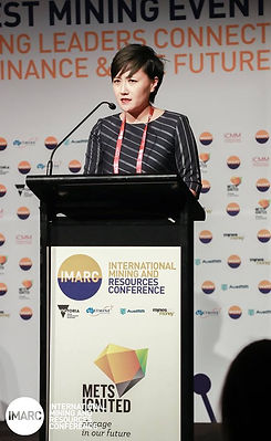 Ning speaking IMARC[60600].jpg