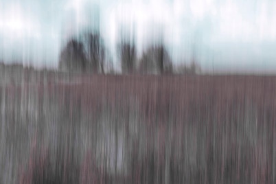 Nieuwe uitdaging van de cursus abstracte fotografie: schilderen met de camera.