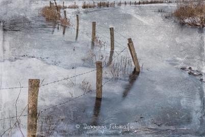 Winterse plaatjes van de Cloppenwaard in Werkendam
