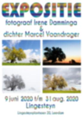 Poster-Lingesteyn.jpg