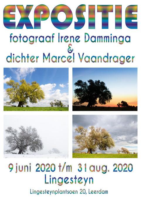 Poster-Lingesteyn
