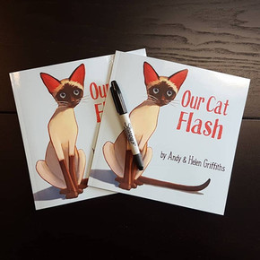 Our Cat Flash picture book.
