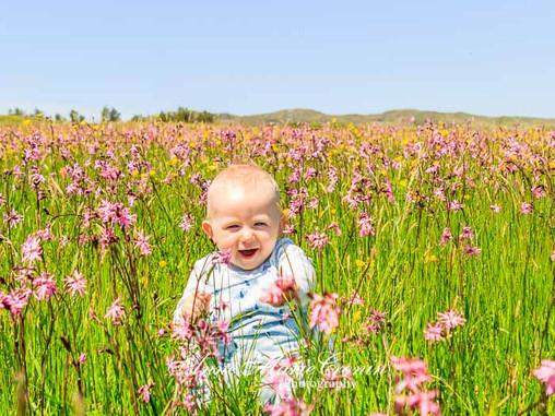 Cuteness overload!! Enjoying the sunshine in Castletownbere, Beara  today