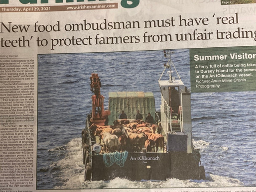 Front page of today's Irish Examiner Farming Section