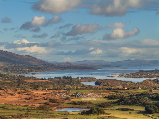 Winner of the Competition,  to celebrate the launch of my new website prize two Pictures of Beara..