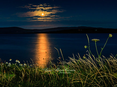 Moonrise over Bere Island from Sandmount