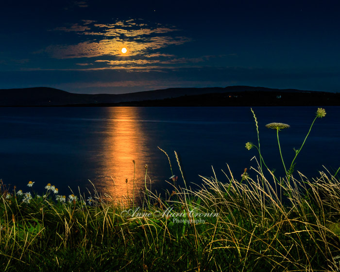 Moon rising over Bere Island -5134.jpg