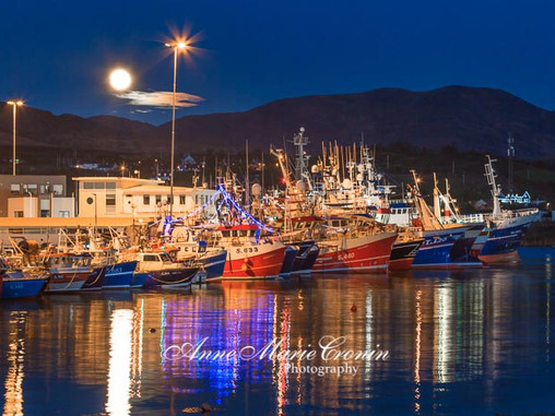 Brexit Uncertainty for Local Fishermen
