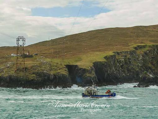 A wild journey through Dursey Sound