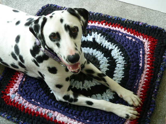 Penelope on a crochet mat