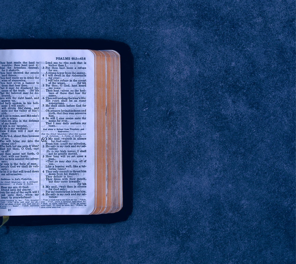 open pocket bible on green surface_edited_edited.png