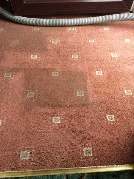 HOYLES CARPET & UPHOLSTERY CLEANERS