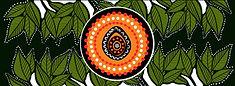 amsa indigenous.jpg
