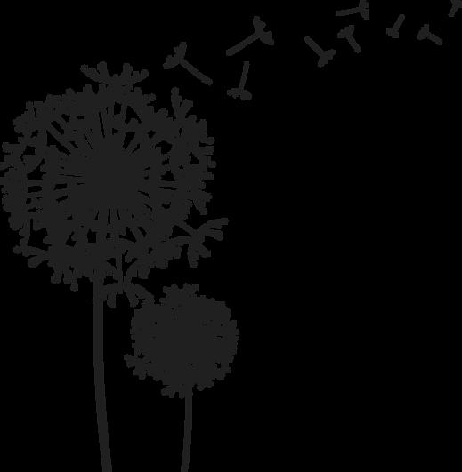dandelion-png-1 (1).png