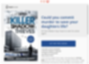 bookfunnel DL.png