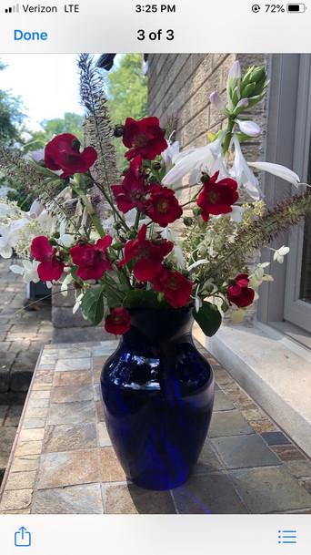 Ode to Shrub Rose  by Paula Lubenow