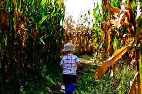 maze child.jpg