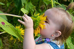 sunflowerbaby.jpg