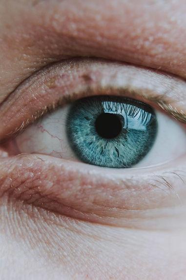 Close up of an iris